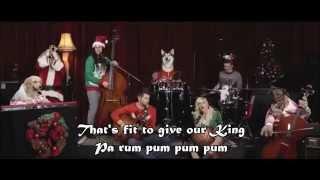 """Little Drummer Boy"" Walk off the Earth (Feat Doggies) - with lyrics"