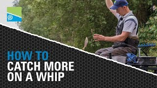 A thumbnail for the match fishing video **CATCH MORE ON A WHIP**