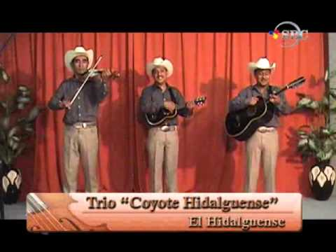 Trio Coyote Hidalguense   El Hidalguense