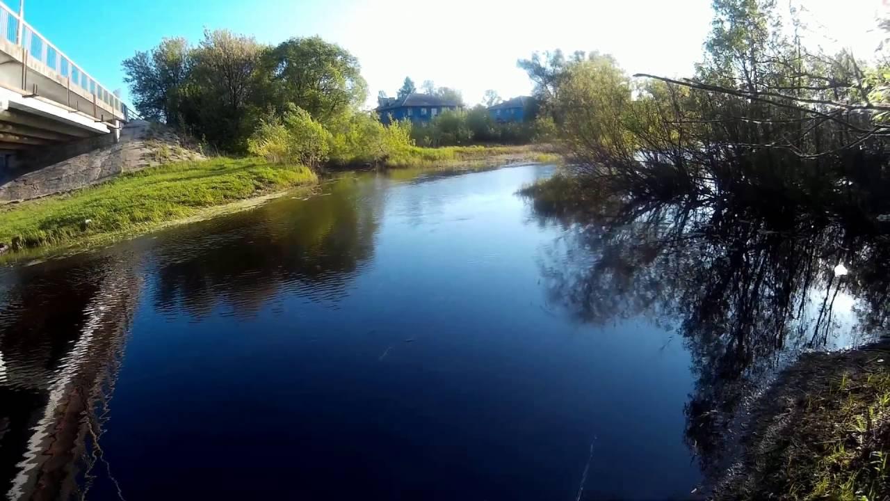 Прогноз клёва рыбы в городе Куровское