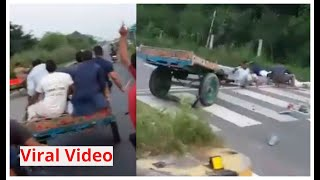 Viral video: Buffalo throws riders off cart, Twitter says ..