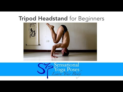 Bakasana for Beginners, Crow Pose Yoga Arm Balance Musica ...