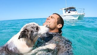 YBS Lifestyle Ep 19 - DIVING WITH SHARKS AND DANGEROUS JELLYFISH | Spearfishing Catch And Cook