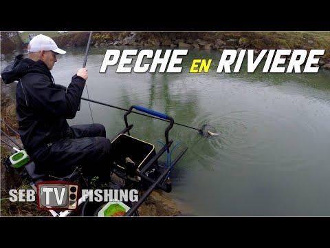 Pêche au coup en rivère - Hiver 2019