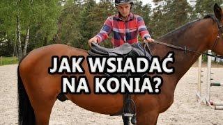 Jak wsiadać na konia? Początek jazdy konnej.