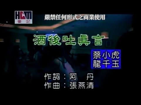 蔡小虎VS龍千玉-酒後吐真言(練唱版)
