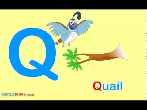 Toddler Words | Words Starting With Q - YouTube
