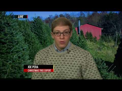 Christmas Tree Expert Joe Pera