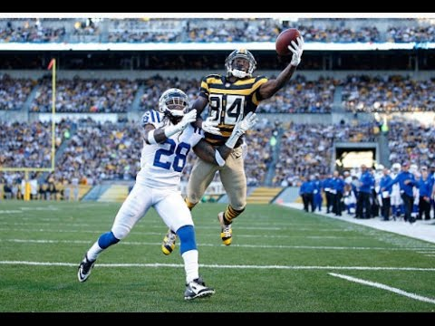 Top 10 Antonio Brown NFL Catches ᴴᴰ