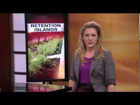 Bioretention Islands In Grand Rapids   FOX 17