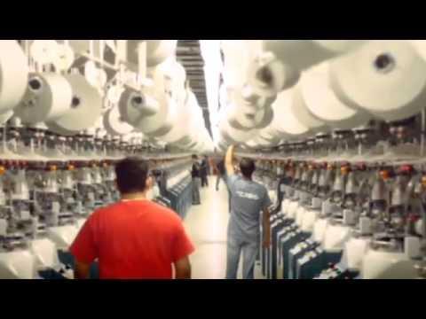 Video Gildan 2015