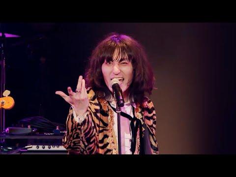 ドレスコーズ/10周年記念ライブ映像『ID10+ TOUR』TEASER