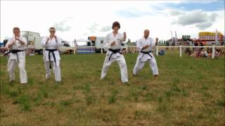 TJK Karate Demonstration at the Totnes show
