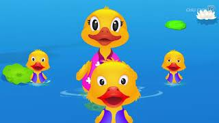 Five Little Ducks Nursery Rhyme With Lyrics   Cartoon Animation Rhymes & Son
