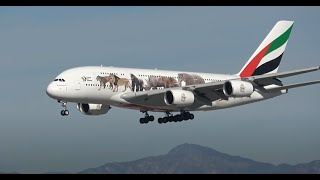 3 HRs Watching Airplanes, Aircraft Identification | Plane Spotting Los Angeles International Airport