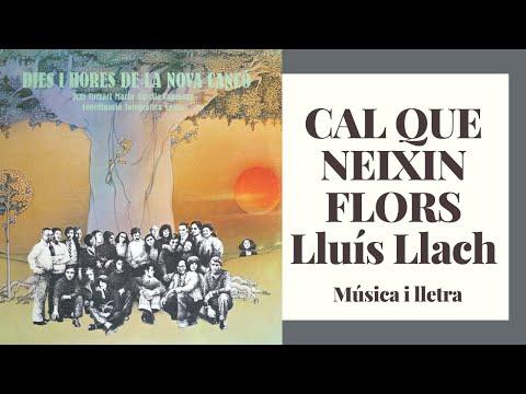 Cal que neixin flors - Lluís Llach (àudio i lletra)