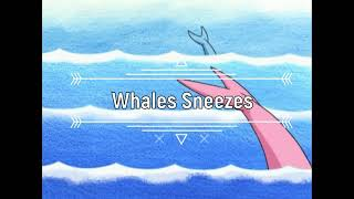 Kids Song | Whales Sneezes