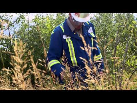 Employee Stories - Environmental Stewardship