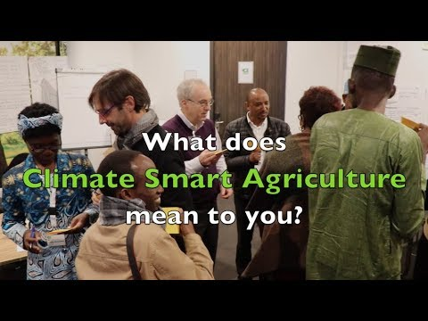What does Climate Smart Agriculture mean to you?