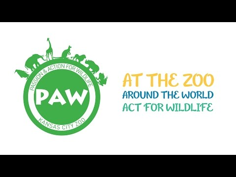 Passion Action for Wildlife at the Kansas City Zoo