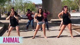 Trey Songz - Animal (Dance Fitness with Jessica)