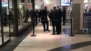 Altercation ends with stabbing during Black Friday shopping at Roosevelt Field Mall