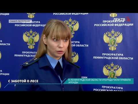 В Ленинградской области упорядочили правила аренды леса
