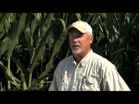The Farmer/AgVenture Yield Specialist Relationship -- Personalized Service