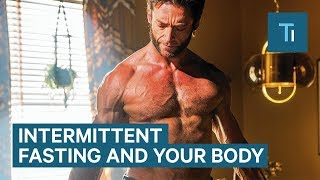 How Intermittent Fasting Affects Your Body and Brain | The Human Body