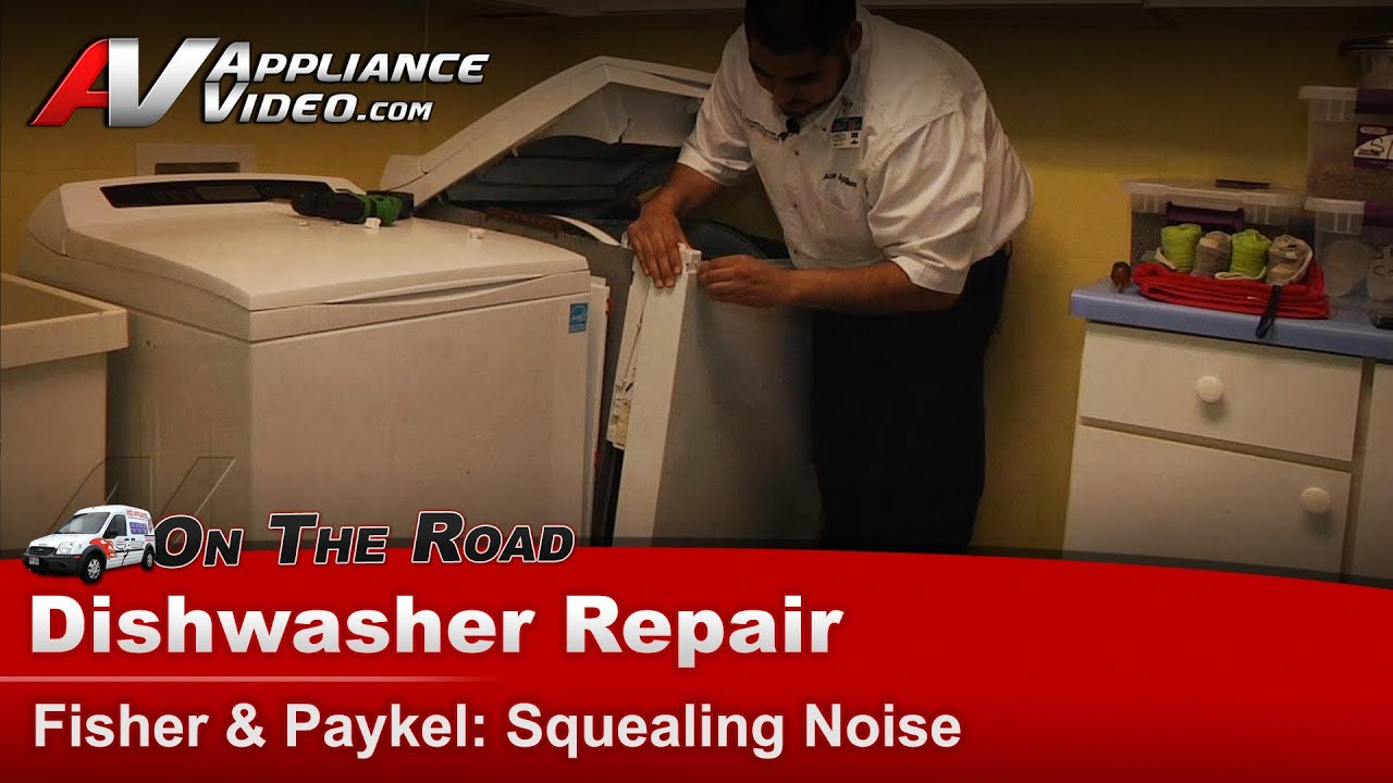 Fisher Amp Paykel Dryer Making Squealing Noise Drum
