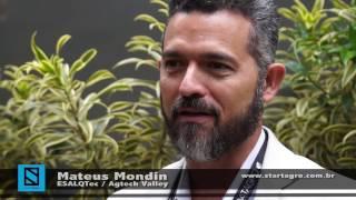 Entrevista com Mateus Mondin