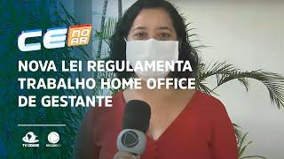 Nova lei regulamenta trabalho home office de gestante durante a pandemia