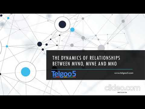 The Dynamics of Relationships Between MVNO, MVNE and MNO