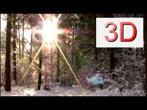 3D-Video: A Winter Dreamscape