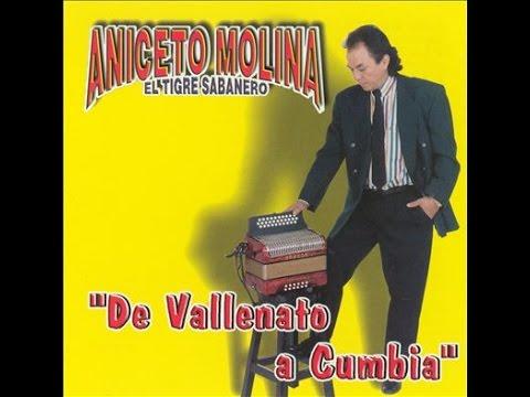 Aniceto Molina El Campanero Mix Cumbia Sampuesana Josefina La Brujita  Charanga Las Mejores Cumbias