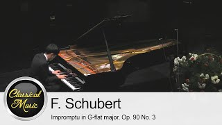 Franz Schubert - Impromptu in G-flat major, Op. 90 No. 3 | Taek Gi Lee