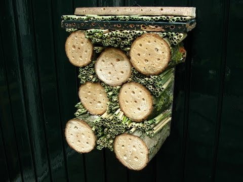 building insect hotels with 21 examples. Black Bedroom Furniture Sets. Home Design Ideas