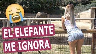 Barbie Rican y Jamsha en el zoologico de Chile