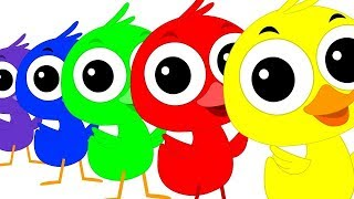 Colorful Duck Song | Duck Song | Kids Tv Color Video | Learn Colors With Ducks | Kids Tv Rhymes