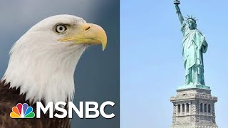 Donald Trump Guts American Dream, Endangered Species Act Both In One Day | Rachel Maddow | MSNBC