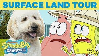 Surface Land Tour 🏝️ SPONGEBOB'S BIG BIRTHDAY BLOW OUT 🎉 SpongeBob