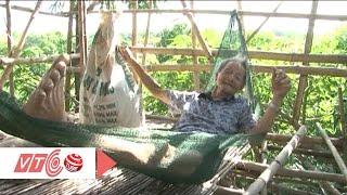 Cụ ông 92 tuổi cất 'nhà 9 tầng' trên cây | VTC