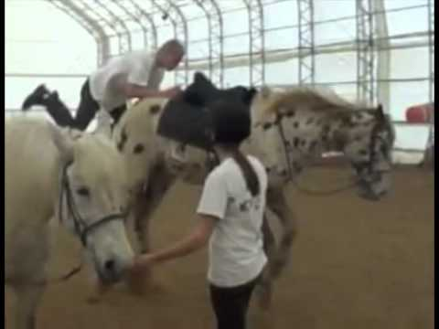 How Not To Mount A Horse