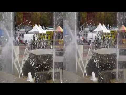 Seagulls at Civic Center Fountain (YT3D:Enable=True)
