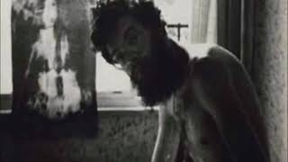 Terence McKenna crazy story