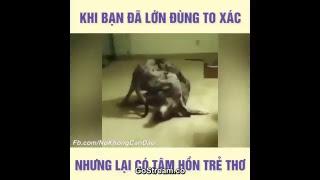 PHIM LẬT MẶT 2 FULL  Video hài hước cười rụng rốn phần 1