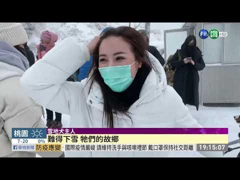 合歡山清晨-2.7℃ 路面結冰大塞車!|華視新聞 20210112