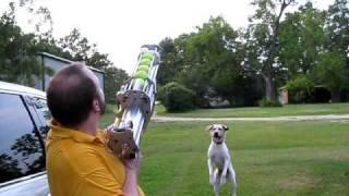 First Fire: Tennis Ball Cannon #2