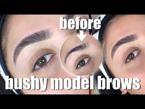 BUSHY MODEL BROWS I Nina Vee