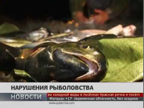 Нарушения Правил рыболовства